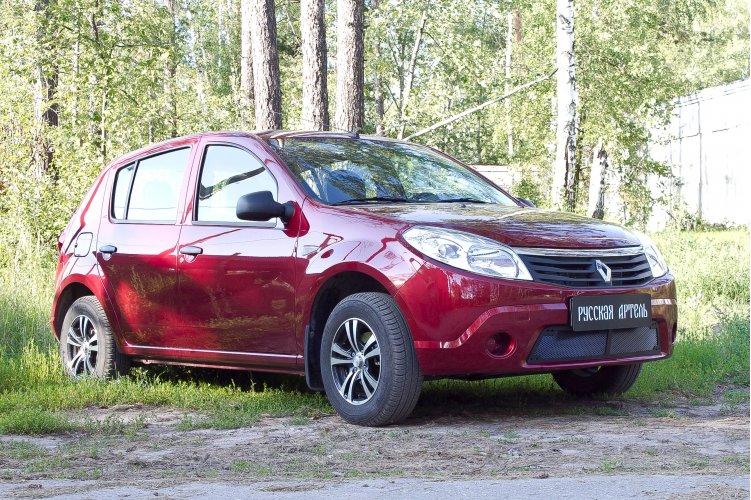 Защитная сетка на Renault Sandero 1